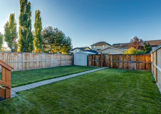 Photo 42: 103 DOHERTY Close: Red Deer Detached for sale : MLS®# A1147835