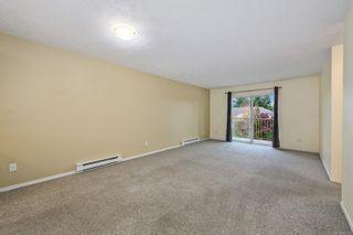 Photo 7: 303 4692 Alderwood Pl in : CV Courtenay East Condo for sale (Comox Valley)  : MLS®# 887736