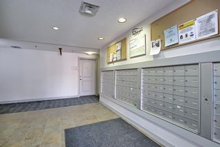 Photo 49: 213 26 VAL GARDENA View SW in Calgary: Springbank Hill Apartment for sale : MLS®# A1095989