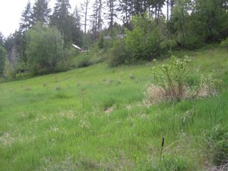 Photo 6: 2481 Squilax Anglemont Road # 2 in Lee Creek: Land Only for sale : MLS®# 10009047