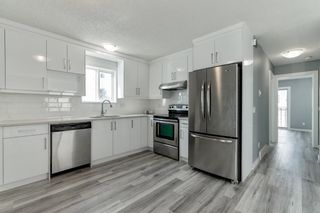 Photo 15: 23 Erin Meadows Court SE in Calgary: Erin Woods Detached for sale : MLS®# A1146245