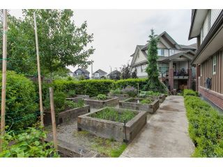 """Photo 67: 204 6706 192 Diversion in Surrey: Clayton Townhouse for sale in """"One92"""" (Cloverdale)  : MLS®# R2070967"""