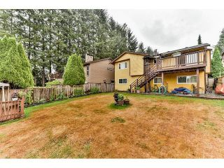 Photo 19: 13955 79A Avenue in Surrey: East Newton House for sale : MLS®# F1447824