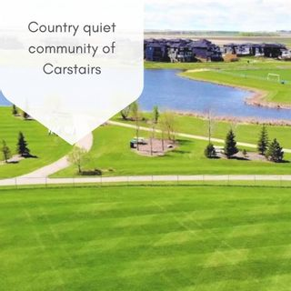 Photo 22: 1416 Price Road: Carstairs Detached for sale : MLS®# A1144975