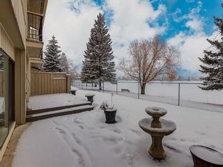 Photo 40: 228 20 MIDPARK Crescent SE in Calgary: Midnapore Semi Detached for sale : MLS®# C4222398