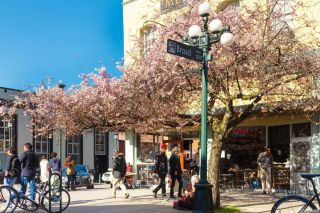 Photo 47: 412A 456 Pandora Ave in : Vi Downtown Condo for sale (Victoria)  : MLS®# 858733