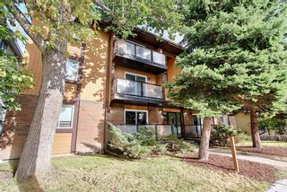 Photo 1: 6 714 5A Street NW in Calgary: Sunnyside Apartment for sale : MLS®# A1031128