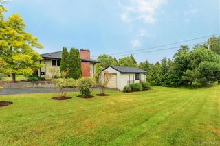 Photo 19: 4051 Hodgson Pl in VICTORIA: SE Lake Hill House for sale (Saanich East)  : MLS®# 842061