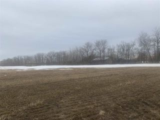 Photo 1: Rg. Rd. 252 Twp. 564: Rural Sturgeon County Rural Land/Vacant Lot for sale : MLS®# E4235322