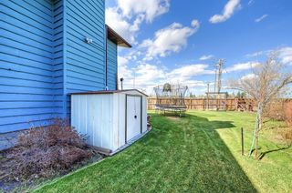Photo 48: 420 Templeby Place NE in Calgary: Temple Detached for sale : MLS®# A1107183