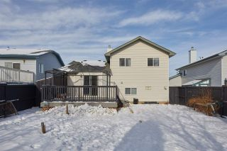 Photo 29: 13847 131A Avenue NW in Edmonton: Zone 01 House for sale : MLS®# E4229483