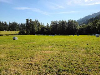 Photo 17: 1065 IVERSON Road in Cultus Lake: Columbia Valley Land for sale : MLS®# R2534678
