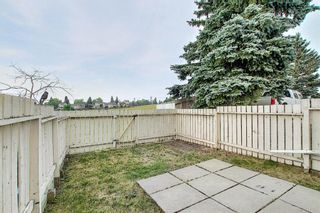 Photo 20: 19 64 Whitnel Court NE in Calgary: Whitehorn Row/Townhouse for sale : MLS®# A1136758