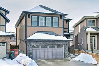 Main Photo: 317 SAGE MEADOWS Circle NW in Calgary: Sage Hill Detached for sale : MLS®# A1072290