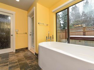 Photo 45: 1505 Croation Rd in CAMPBELL RIVER: CR Campbell River West House for sale (Campbell River)  : MLS®# 831478
