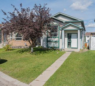 Main Photo: 51 Martinbrook Road NE in Calgary: Martindale Detached for sale : MLS®# A1148157