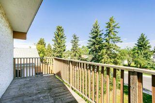 Photo 33:  in Edmonton: Zone 29 House for sale : MLS®# E4248358