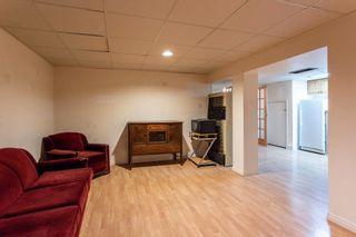 Photo 34:  in Edmonton: Zone 22 House for sale : MLS®# E4254166