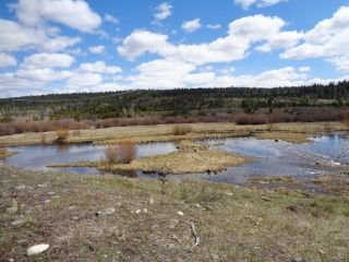 Photo 21: LOT 1 TUNKWA LAKE ROAD: LOGAN LAKE Land Only for sale (SOUTH WEST)  : MLS®# 139085