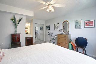 Photo 29: 302 8715 82 Avenue in Edmonton: Zone 17 Condo for sale : MLS®# E4248630