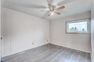 Photo 18: 214 Erin Woods Circle SE in Calgary: Erin Woods Detached for sale : MLS®# A1120105