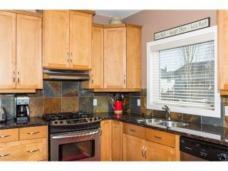 Photo 16: 241 Springmere Way: Chestermere House for sale : MLS®# C4005617
