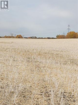 Photo 3: Rystrom Farm in Corman Park Rm No. 344: Agriculture for sale : MLS®# SK828530
