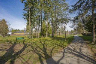 """Photo 18: 210 5655 INMAN Avenue in Burnaby: Central Park BS Condo for sale in """"NORTH PARC"""" (Burnaby South)  : MLS®# R2449470"""