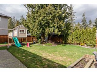 Photo 20: 4215 199A Street in Langley: Brookswood Langley House for sale : MLS®# R2149185