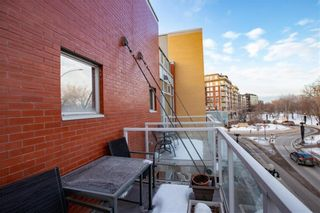 Photo 37: 234 Waterfront Drive in Winnipeg: Exchange District Condominium for sale (9A)  : MLS®# 202103507
