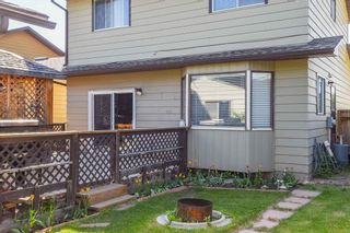 Photo 35: 1244 Berkley Drive NW in Calgary: Beddington Heights Detached for sale : MLS®# A1118414