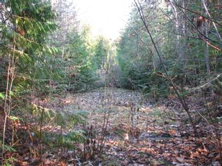 Photo 6: Lot 1 Trans Canada Hwy: Sorrento Land Only for sale (Shuswap)  : MLS®# 10171991