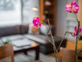 Photo 6: 5403 106 Street in Edmonton: Zone 15 House for sale : MLS®# E4228041