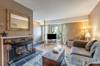 Photo 10: 132 70 WOODLANDS Road: St. Albert Carriage for sale : MLS®# E4261365