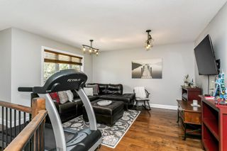 Photo 24: 3 HIGHLANDS Way: Spruce Grove House for sale : MLS®# E4254643