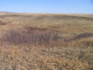 Photo 9: 1 Pine Coulee Ranch in Rural Willow Creek No. 26, M.D. of: Rural Willow Creek M.D. Residential Land for sale : MLS®# A1090094