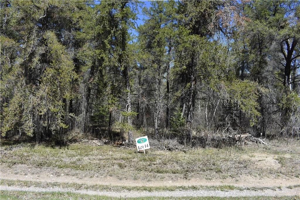 Main Photo: 37114 Zebrun Road in Belair: Belair Properties Residential for sale (R27)  : MLS®# 202015633