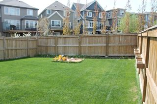 Photo 27: 17 MASTERS Common SE in Calgary: Mahogany Detached for sale : MLS®# C4255952