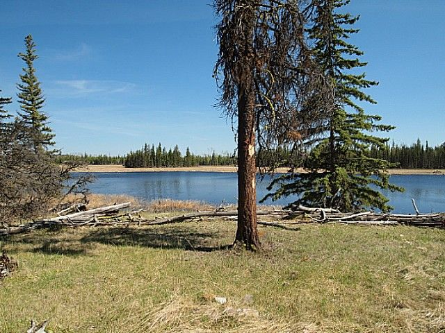 Photo 10: Photos: 4976 BISHOP LAKE Road in Lone Butte: Lone Butte/Green Lk/Watch Lk Land for sale (100 Mile House (Zone 10))  : MLS®# N232938