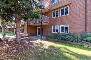 Photo 50: 108, 22 Alpine Place in St. Albert: Condo for rent