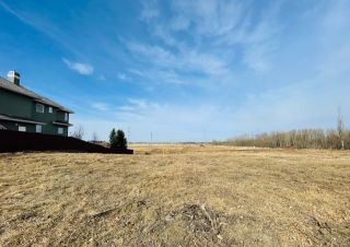 Photo 4: 738 52304 RGE RD 233: Rural Strathcona County Rural Land/Vacant Lot for sale : MLS®# E4236967