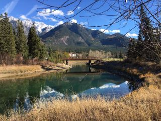 Photo 10: Lot 98 RIVERSIDE DRIVE in Fairmont Hot Springs: Vacant Land for sale : MLS®# 2460024