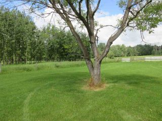 Photo 44: 27332 Sec Hwy 651: Rural Westlock County House for sale : MLS®# E4228685