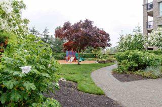 """Photo 39: 121 21009 56 Avenue in Langley: Salmon River Condo for sale in """"Cornerstone"""" : MLS®# R2462328"""