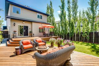 Photo 18: 43 Panamount Lane NW in Calgary: Panorama Hills Detached for sale : MLS®# A1126762