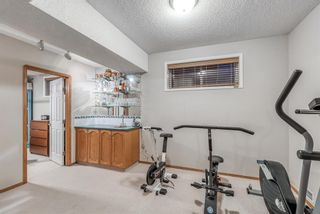 Photo 34: 232 Coral Shores Court NE in Calgary: Coral Springs Detached for sale : MLS®# A1081911
