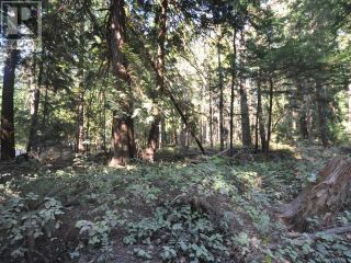Photo 8: 1239/1241 VANCOUVER BLVD in Savary Island: Vacant Land for sale : MLS®# 16136