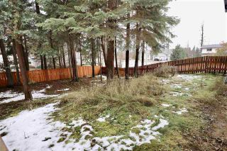 Photo 7: 1469 CHESTNUT Street: Telkwa House for sale (Smithers And Area (Zone 54))  : MLS®# R2513791