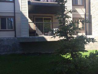 Main Photo: 3110 16969 24 Street SW in CALGARY: Bridlewood Condo for sale (Calgary)  : MLS®# C3632899