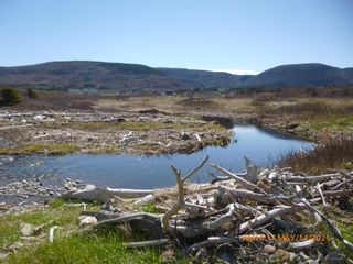Photo 24: Lot 1 Old Cabot Trail Road in Point Cross: 306-Inverness County / Inverness & Area Vacant Land for sale (Highland Region)  : MLS®# 202111357